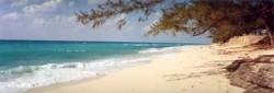 bahama-adventures
